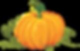 pumpkin_PNG9383.png