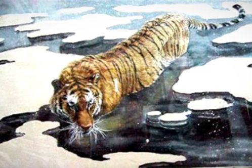 Tiger in Ice Water
