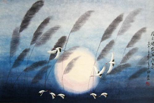 Crane in Night Sky