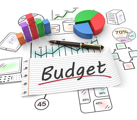 Budget Graphic.jpg