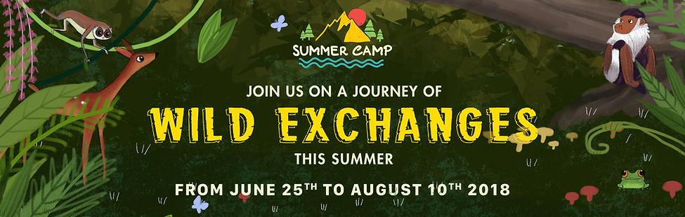 aurora summer camp 2018