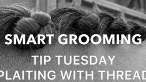 Tip Tuesday~ Plaiting with Thread ~ Smart Grooming