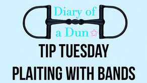 Tip Tuesday~ Plaiting with Bands
