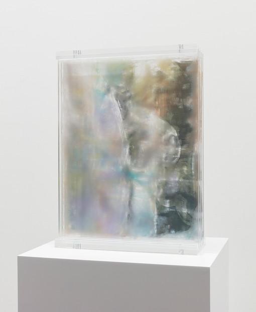 A Memoir Of Disintegration, 2019  UV ink on plexiglass  16 x 21 3/4 x 6 inches