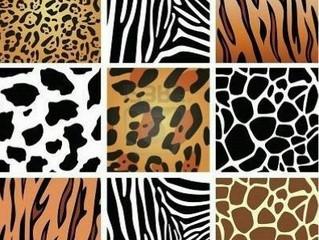 """Claves para Combinar el  """"Animal Print"""""""