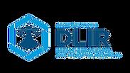 DLIR logo.png
