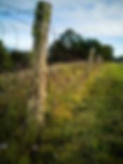 ica boundary.jpg