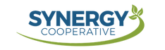 Synergy - Logo (1) 2.png