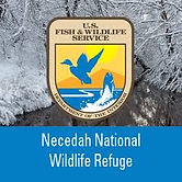 necedah wildlife refuge.jpg
