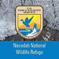necedah wildlife refuge.jpg