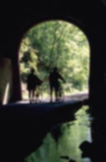 trsm_tunnel.jpg