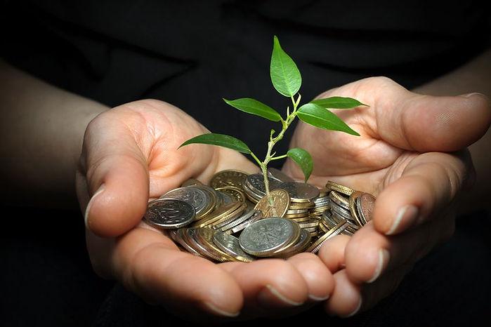 nurturing economic growth
