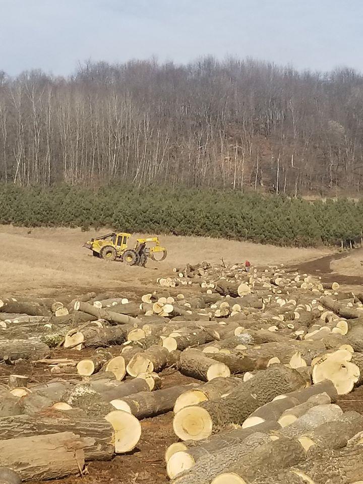 Moving logs around