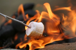 CAMPFIRES (with S'Mores!)