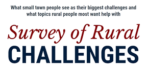 Rural%20Challenges%20Survey%20graphic_edited.png