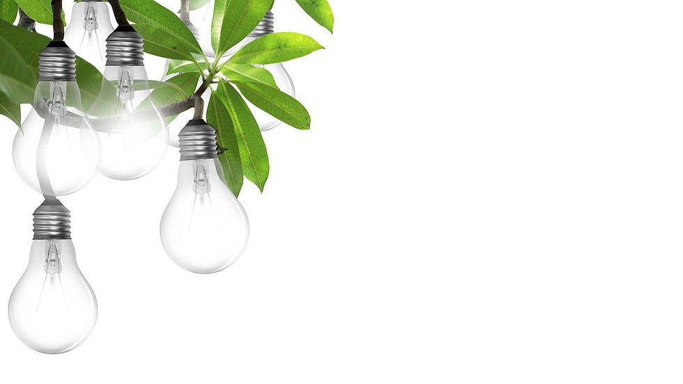 leaf-bulb (002).jpg