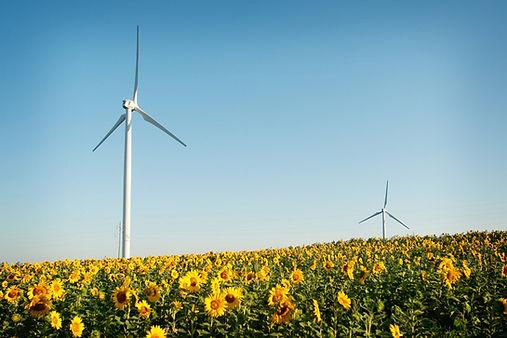 envision-cashton-wind-farm-10.jpg