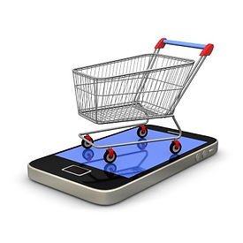 e-commerce is the wave of the future.  We show your business how you can sell your products on line world wide.