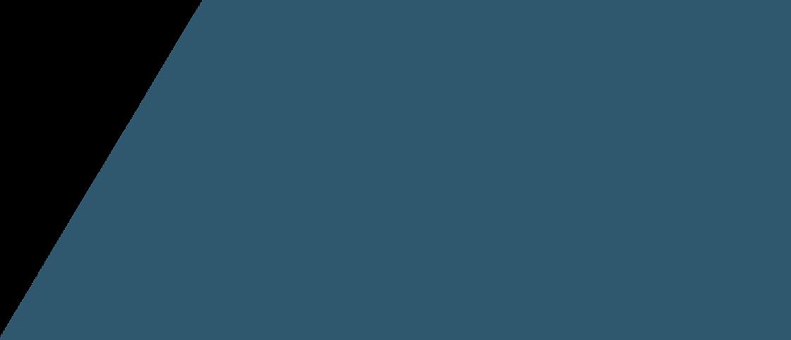 Banner bleu2.png