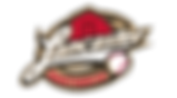 barnstormers_logo.png
