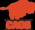 CAOS_Logo_P1665C.png