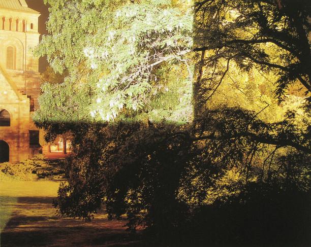 Domgarten, Speyer