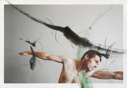the dream of flying, XIII, 2011