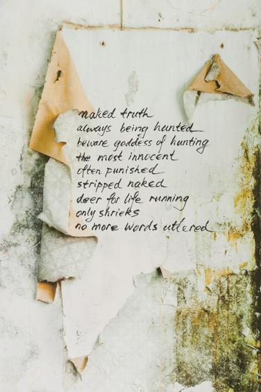 naked truth, 2014, detail