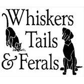 WhiskersTailsFerals.jpg
