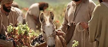 Jesus-Christ-Videos-Parables-of-Jesus-La