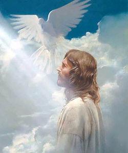 Dove and Jesus.jpeg
