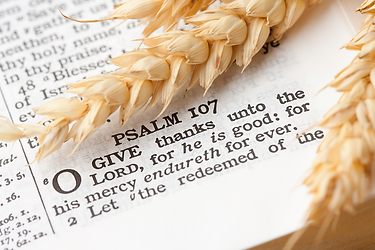Psalm 139.png