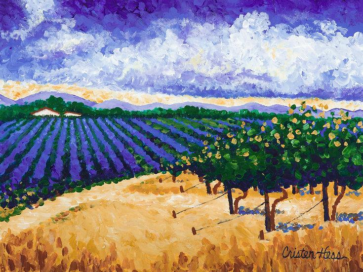 Blue Vineyard