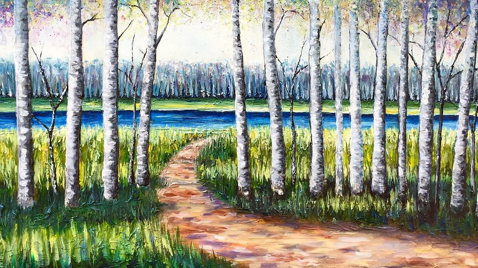 Dreaming Birch