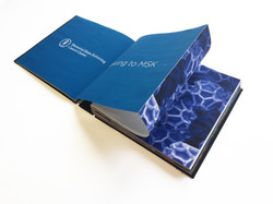 IMGMSK Annual Report
