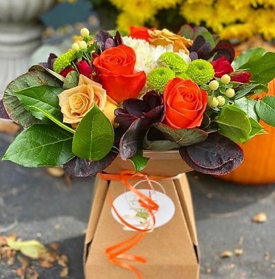October 22nd, 2021-Friday Flowers