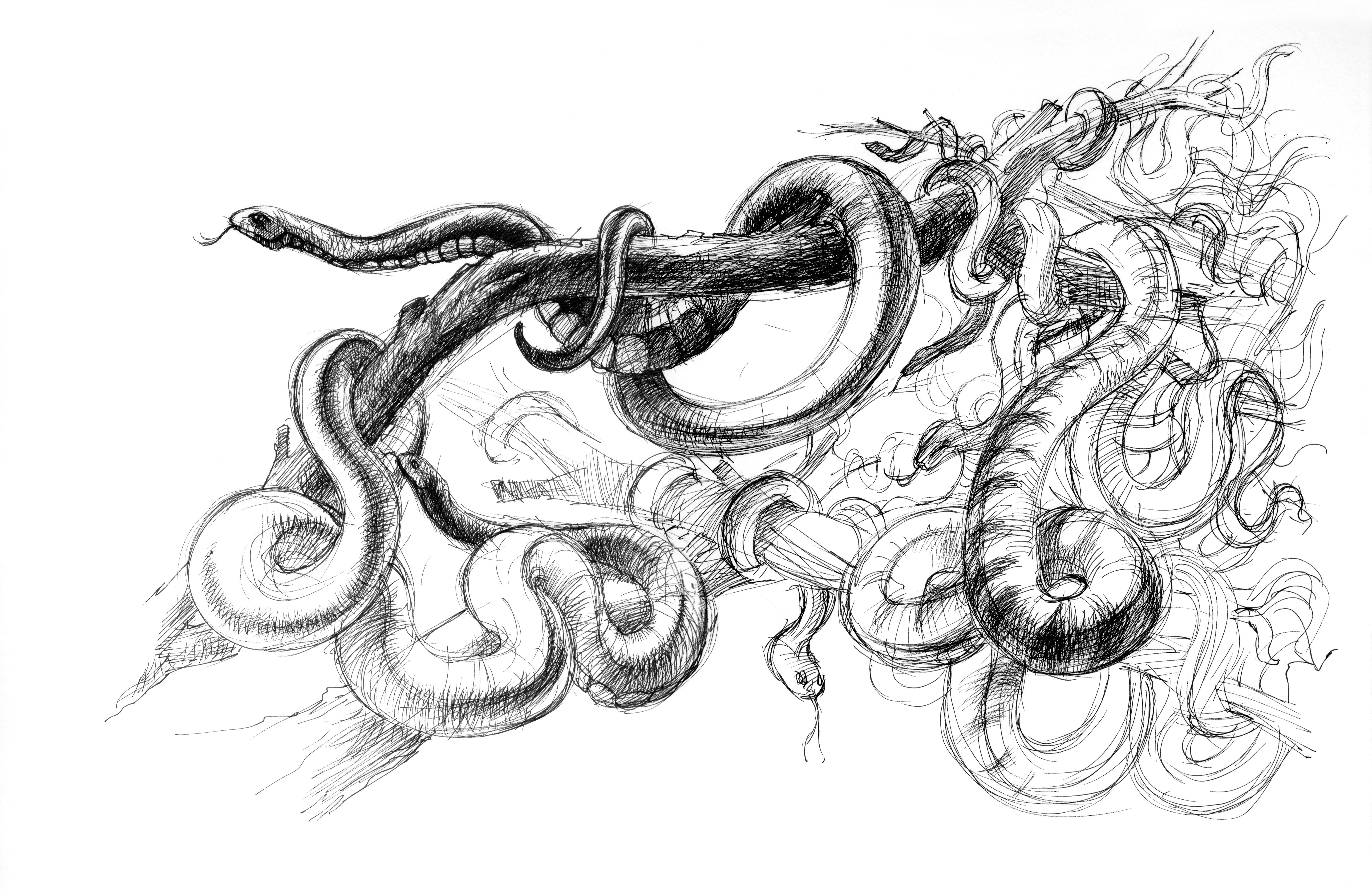 ILU Ovid-Schlangen