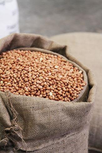Arvin-Master-Chef-peanuts-25kg.jpg