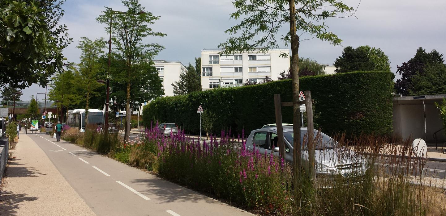 Avenue de Bourgogne