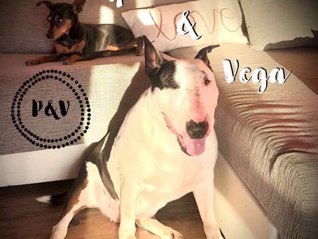 Pipa & Vega, las verdaderas protagonistas