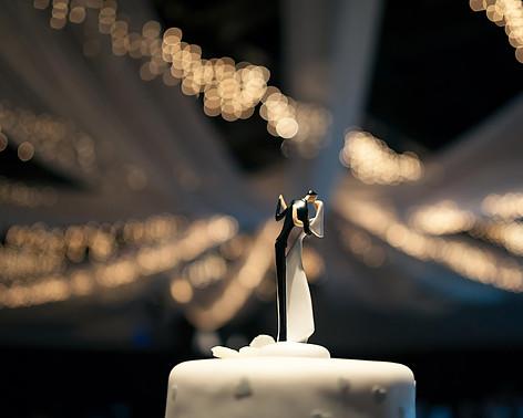 Engagement Wedding Photographer Seattle   Seattle Tacoma Bride   Pacific Northwest Wedding   Tacoma Destination Wedding   PNW Venues   Wedding Dress   Whimsical Wedding   Cake Topper   Seattle Wedding Venues