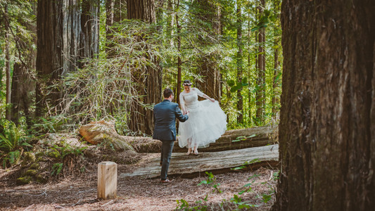 Avenue of the Giants | Romantic Washington Wedding | David's Bridal | Lace Wedding Dress | Vintage Wedding | Seattles Best Wedding Photographer | The Pink Lady | Destination Wedding | Old Town Eureka California | Flower Crown | Dove Tattoo | Founders Grove | Redwoods