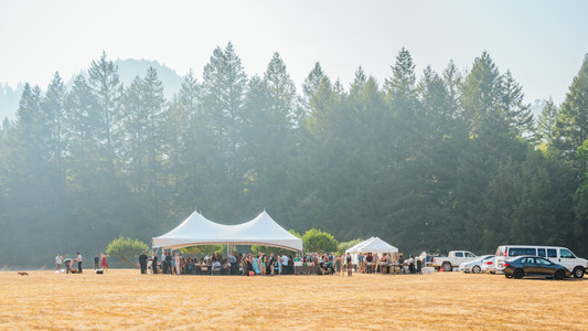 Mendocino County California Wedding | Redwood Wooded Wedding | Pronovia Bridal | Lace Wedding Dress | Destination Wedding Photographers | Seattle Wedding Photographers | Leggett California | Couples Posing | Wedding Poses