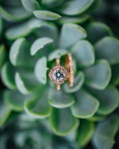Mendocino County California Wedding | Redwood Wooded Wedding | Pronovia Bridal | Lace Wedding Dress | Destination Wedding Photographers | Seattle Wedding Photographers | Ring Shot | Succulents in weddings