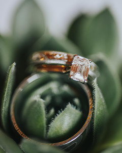 Wedding Ring | Succulents | The Canal Seattle Washington |
