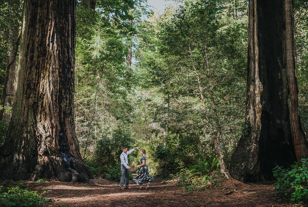 Wooded Forest Engagement Session | Redwood Forest Couples Portraits
