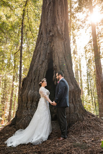 Avenue of the Giants | Romantic Washington Wedding | David's Bridal | Lace Wedding Dress | Vintage Wedding | Seattles Best Wedding Photographer | The Pink Lady | Destination Wedding | Old Town Eureka California | Flower Crown | Dove Tattoo | Founders Grove | Redwood Grove