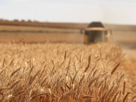 Prepare For Fall Harvest- Safety Tips