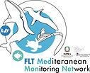 logo FLT.jpg