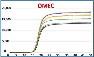 PCR Screen Image
